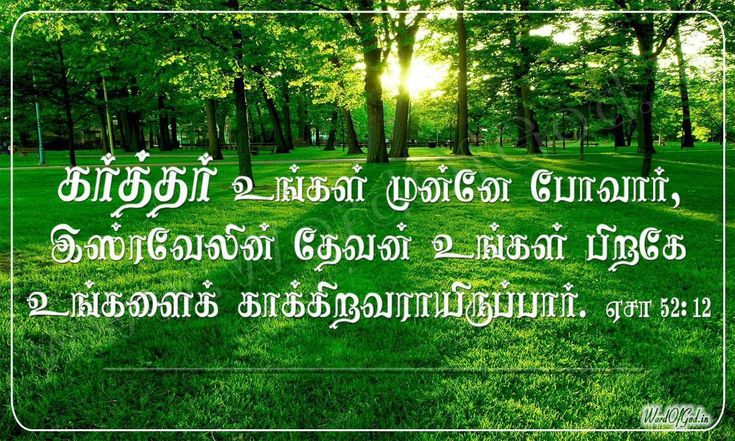 Desktop Free Download Tamil Bible Words