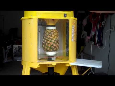 Image result for pineapple  peeler and corer images hands free machine