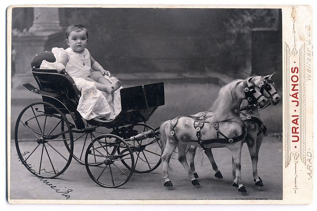 +~+~ Antique Photograph ~+~+  Little child on an amazing carriage and even more amazing toy horses!  Just wow!  ca. 1910