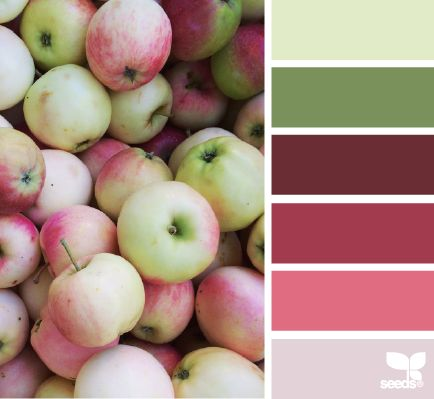 Apple Hues - http://design-seeds.com/index.php/home/entry/apple-hues3
