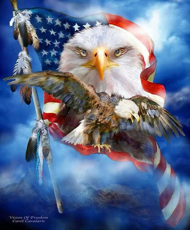 True American SpiritI Love This Pic Eagle Pictures Patriotic Pictures Eagle