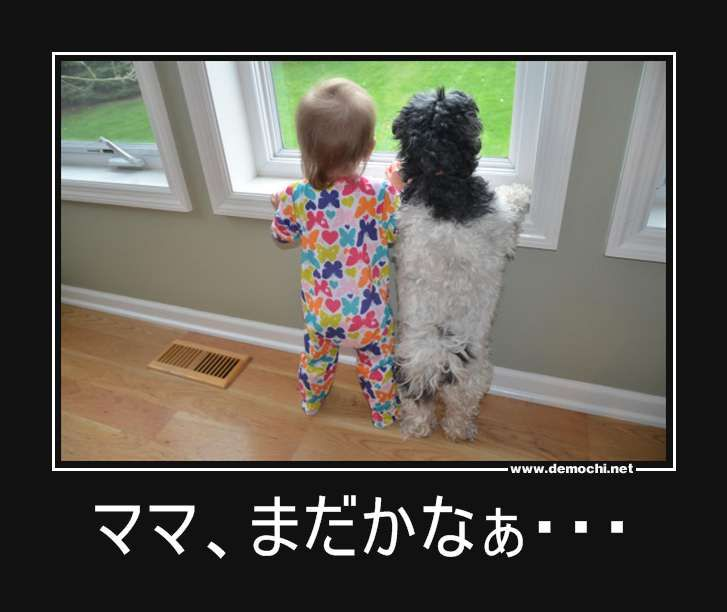 Where is mammy?: Animals, Friends, Dogs, Sweet, Pets, Funny, Baby, Kids, Photo