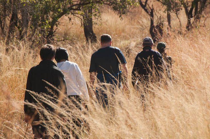 Three Tree Hill | Spioenkop | South Africa game walks
