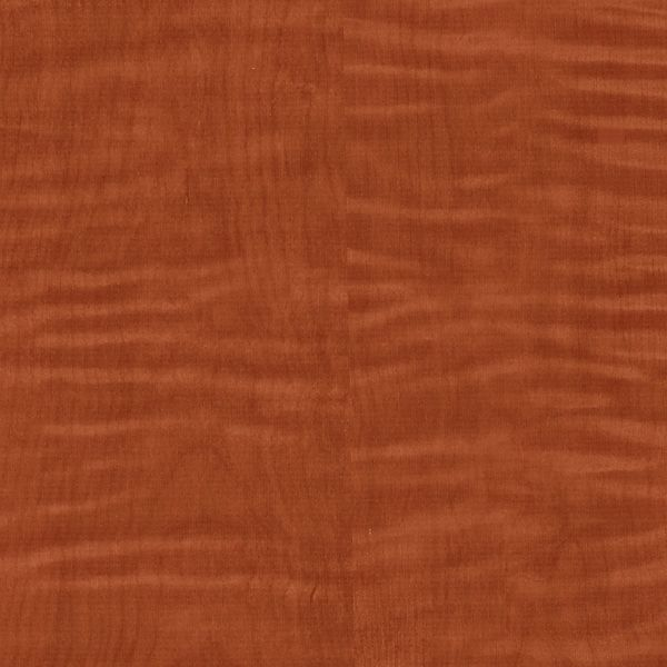 DN2-CLN-28 | Oranges | Levey Wallcovering and Interior Finishes: click to enlarge