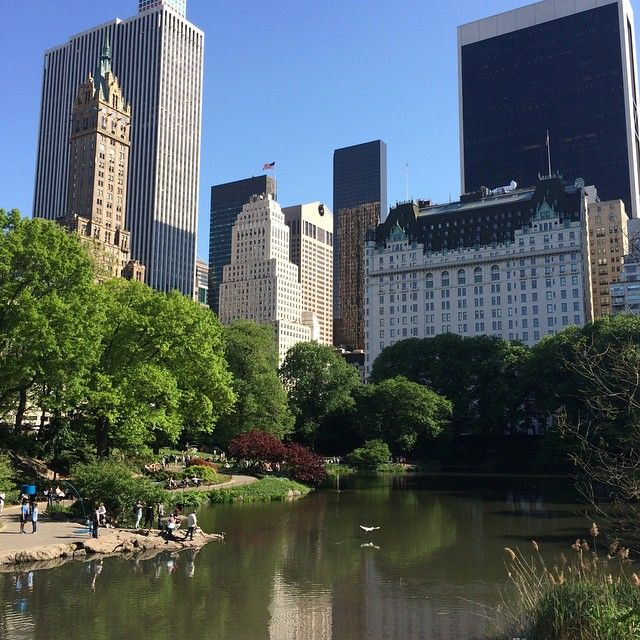 #centralpark #centralparkzoo #centralparknyc #manhattan #newyork ⛵️😎🇺🇸