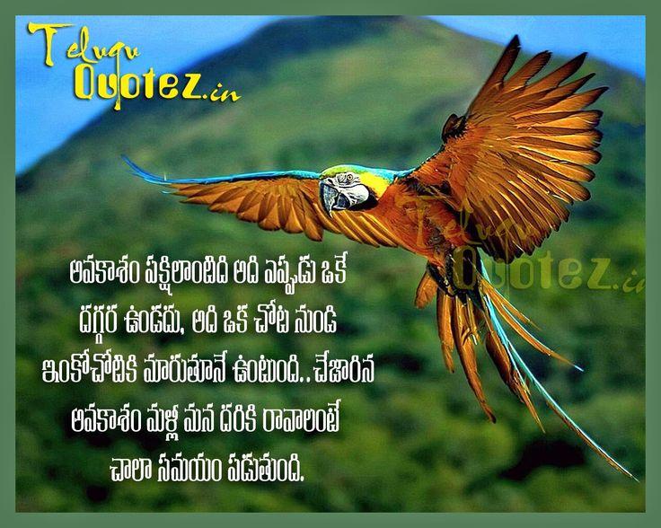 Teluguquotez In Telugu Inspirational Life Quotes Quotes Life