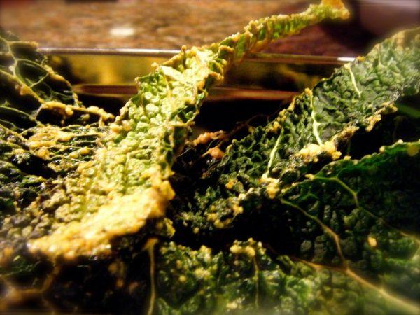 Estos chips saben a cielo y son la alternativa nutritiva y saludable a las chips de patata de bolsa. Si te gustan te propongo que utilizando la misma receta experimentes también con col lombarda, alcachofa o otras verduras que se te antojen… simplemente deliciosas! INGREDIENTES 500G COL VERDE RIZADA 250ML. PIPAS DE GIRASOL (REMOJADAS MIN...