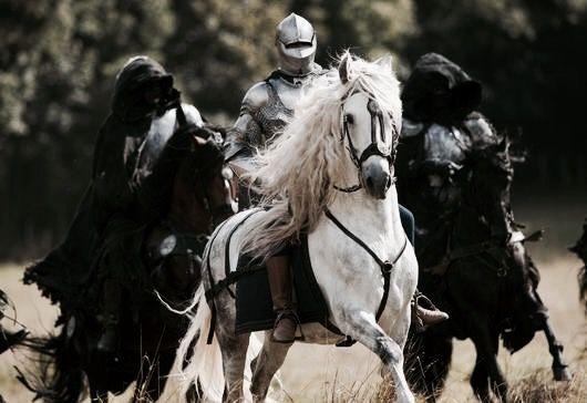 Hero | The North Realm