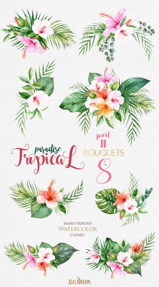 This set of 8 high quality hand painted watercolor tropical bouquets Perfect graphic for invitations, greeting cards, wallart, posters, logo, quotes and more.  Item details:  8 PNG files (300 dpi, RGB, transparent background) Wreaths size (larger side) aprox.: 14 in, 4200 px - 9 in, 2700 px ---------------------------------------------------------------- Tropical Bouquets part I : https://www.etsy.com/listing/504672049/tropical-watercolor-flowers-leaves?ref=listi...