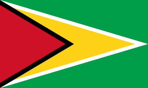 The Flag of Guyana, South America