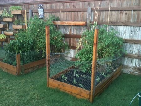 easy backyard vegetable and herb garden for small spaces i mostly like the idea that the dogs and rabbits will stay out of there - Garden Ideas To Keep Animals Out