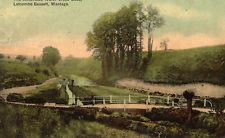 The Celebrated Water Cress Beds, Letcombe Bassett, Wantage.    1910.