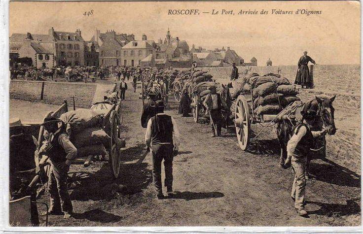 Roscoff-Arrivée des voitures d'oignons - Histoire de la Bretagne — Wikipédia