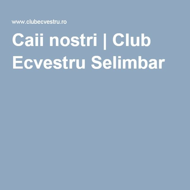 Caii nostri   Club Ecvestru Selimbar