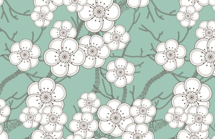 white-flowers-illustration-design-plain