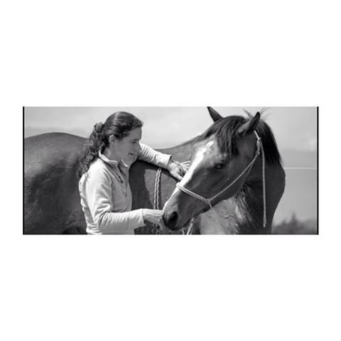 """""""Pour parler à un cheval, il n'y a pas besoin de mots. C'est une étreinte charnel qui alimente nos rêves.  Désolé pour ma longue absence de 6 semaines. J'avais mes épreuves de fin d'année et après j'ai oublier mon mot de passe 😁enfin bon maintenant je suis de retour #cheval #reve #magique #citation #horse #blanc #noir #love#etologie"""