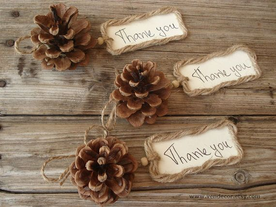 Natural Pine Cone Thank you Twine Tag- Set of 10, Pine Cone Place Cards, Pine Cone Favor, Rustic Woodland Wedding, Fall Winter Wedding Favor...