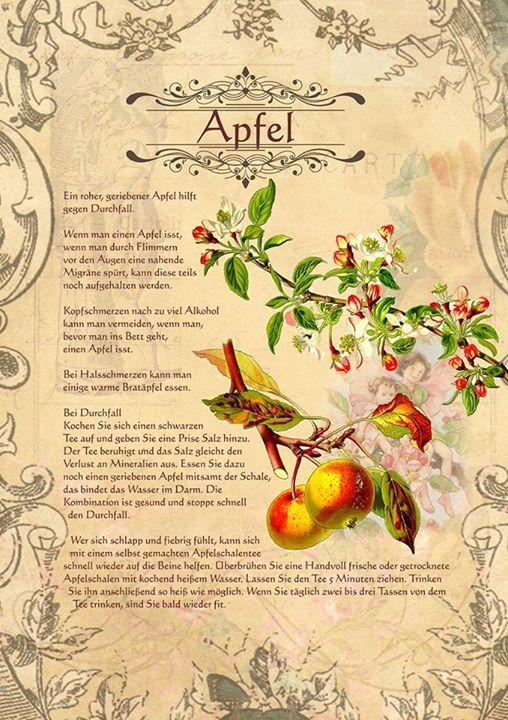 Apfel http://www.kraeuter-verzeichnis.de/