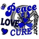 Peace Love Cure 2 Anal Cancer Sigg Water Bottle for $30.00