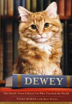 Dewey the Small-Town Cat Who Touched the World by Vicky Myron