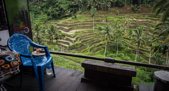 """Rice Fields in Ubud 