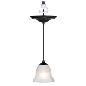 Kit that converts a recessed light to a pendant light. You just screw it into the light socket!