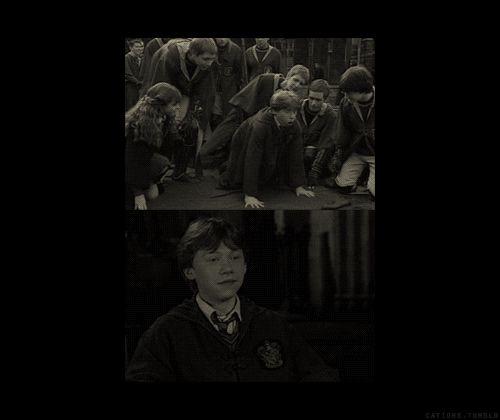 harry potter gifs | Harry Potter Cast Gifs Gif