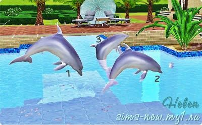 Helen-sims: Sea animals - Dolphins (part 2) | Sims 3