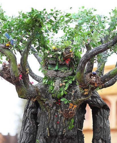 Wood nymphs, Dr. who and Inspiration on Pinterest