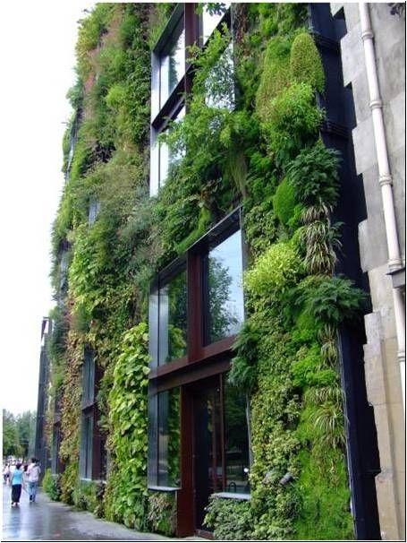 les 25 meilleures id es de la cat gorie toit vegetal sur pinterest jardins sur le toit id es. Black Bedroom Furniture Sets. Home Design Ideas