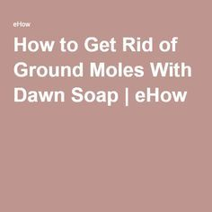 Amazing How to Get Rid of Ground Moles With Dawn Soap