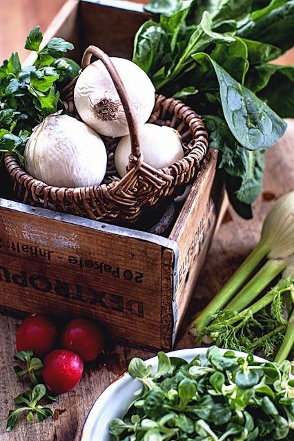 fresh vegatables by Agnieszka Krach