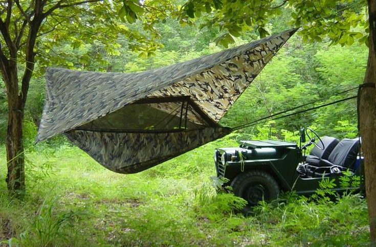Jungle Hammock & Fly (click to enlarge)