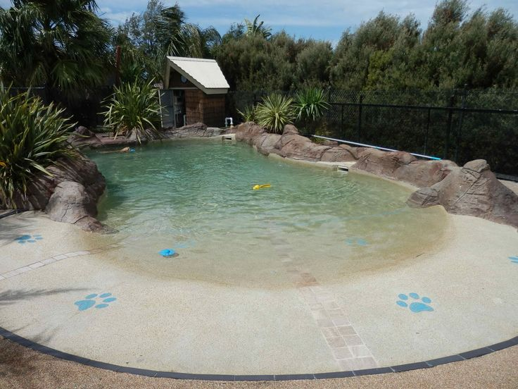 Dog Swimming Pools | Here's a dog's eye view of the water. Inviting!