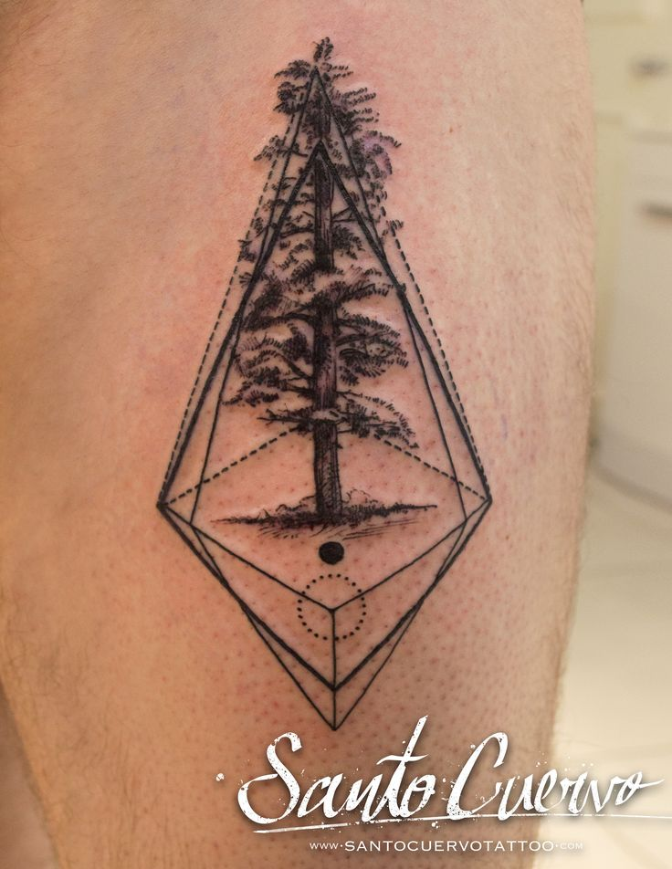 Prism Pine Tree Tattoo by Alex Alvarado. Vegan friendly tattoo and piercing studio in Hackney, North London. Specialised in modern tattoos, such as watercolour, realism and geometry.
