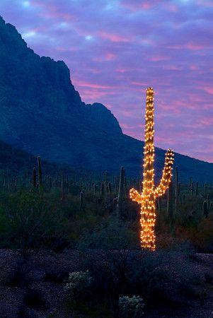 Merry christmas, Arizona and Grand canyon on Pinterest