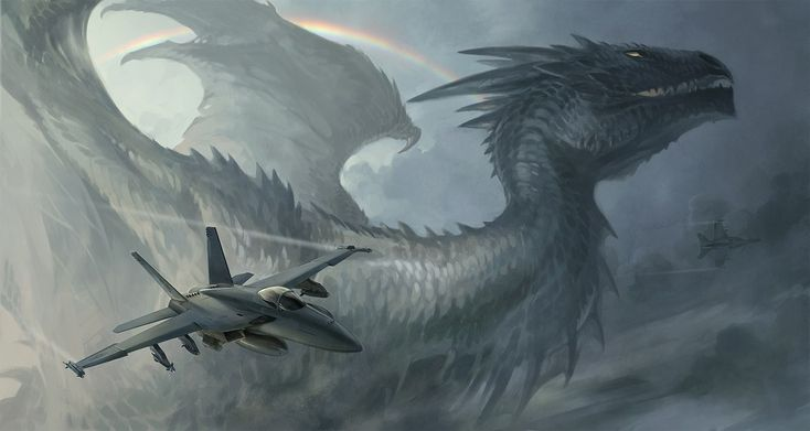 Dragon And Jet Wallpaper From Dragons Wallpapers
