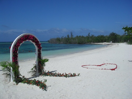 Vow renewal idea..the heart shaped petals on the sand