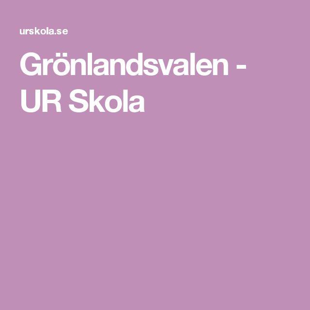 Grönlandsvalen - UR Skola