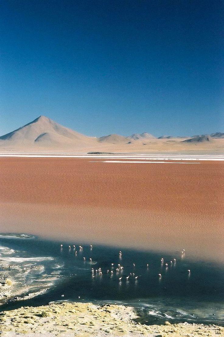 Mar de la Sal, Parque Nacional Salar de Uyuni, Bolivia. ¡Uh! ¡He sido a los Lagos de Sal chilenos, pero oí que estos en Bolivia son increíbles también