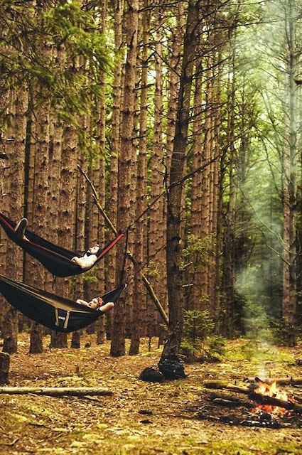 the gold hat.: camping hammock