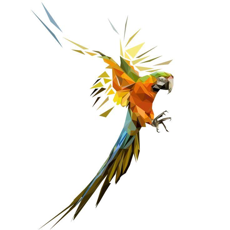 low polygon bird