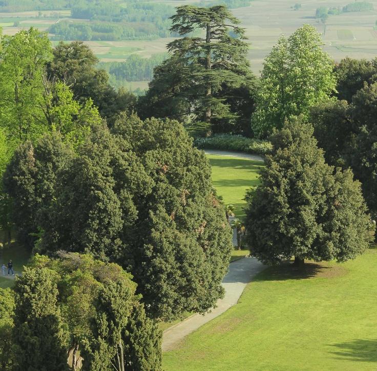 © Valentina Pasolini #Parco #CastellodiMasino #Piemonte