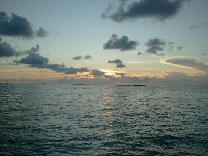 71 Best Key West Activities Amp Events Images On Pinterest