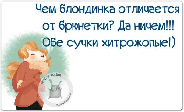 Веселые фразки в картинках :) №021214 » RadioNetPlus.ru развлекательный портал