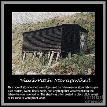 Barbara Griffin - Black Pitch Storage Shed