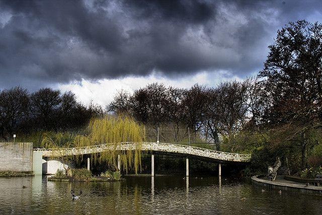 Bridge in Blijdorp Zoo Rotterdam by Qsimple, via Flickr