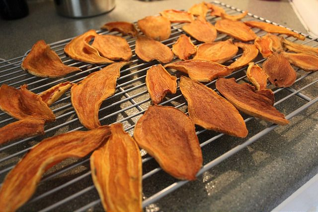 Suh-weet! Homemade Sweet Potato Dog Treats