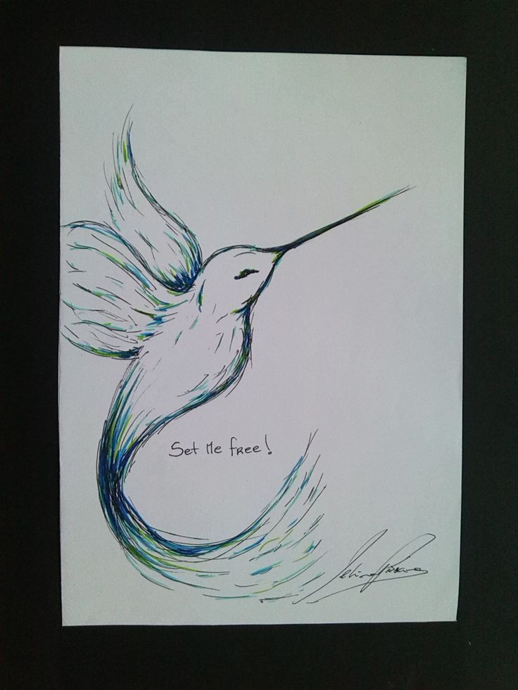Illustration done with ink pen and felt pen   2013