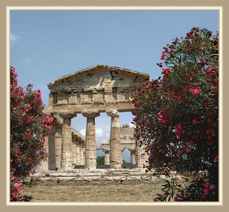 Temple of Athena, Paestum.